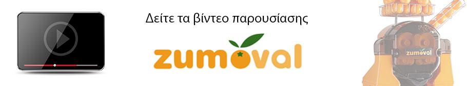 Zumoval Video Gallery Banner